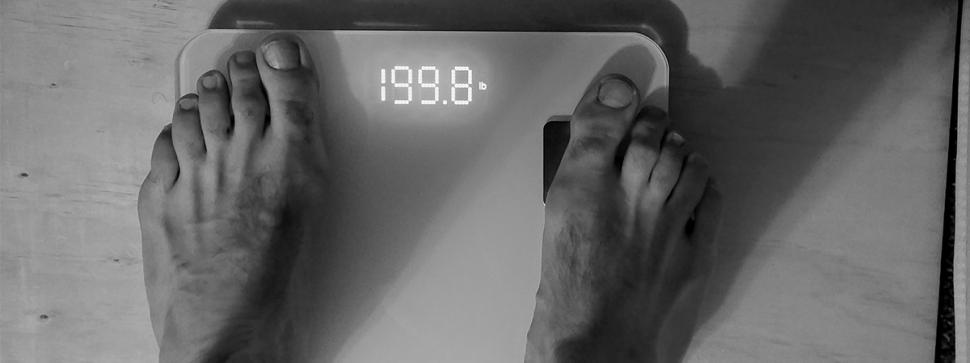 scale.utah